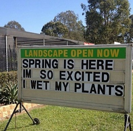 Click image for larger version  Name:spring!.jpg Views:240 Size:78.6 KB ID:79730