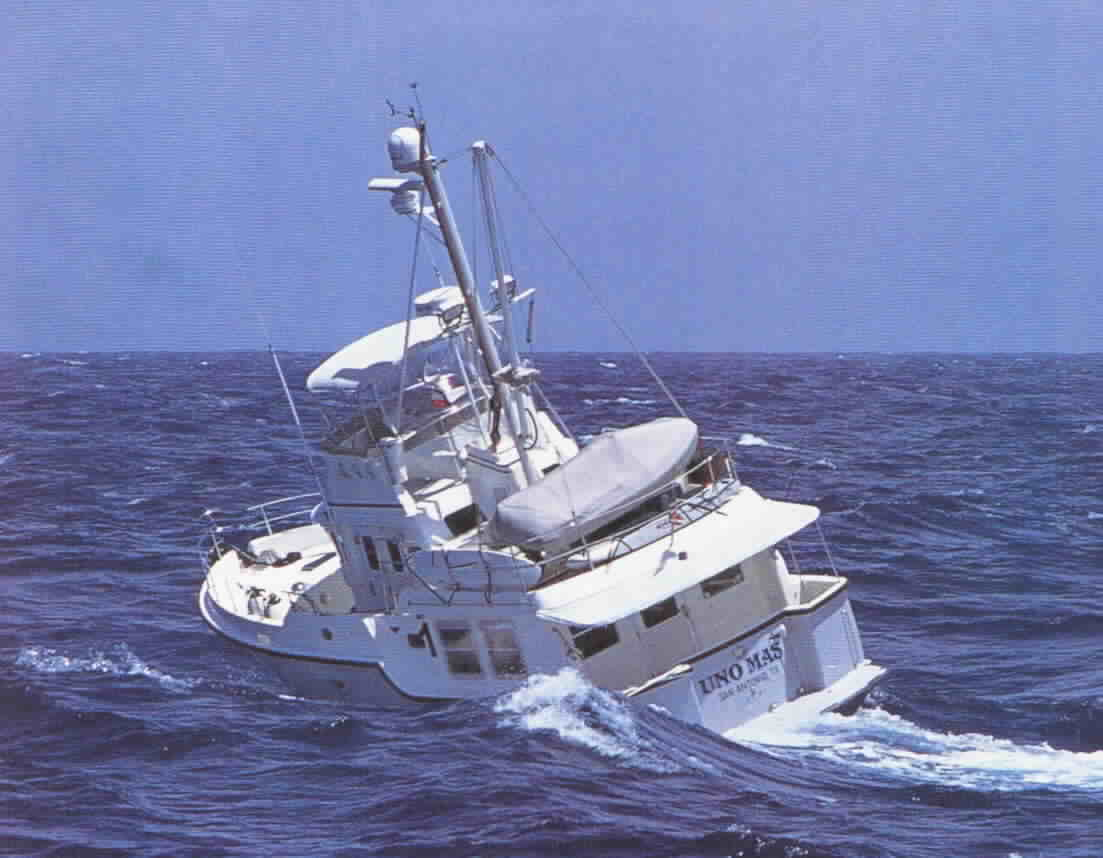 Click image for larger version  Name:Nordhavn Rolling at sea.jpg Views:530 Size:51.1 KB ID:80988