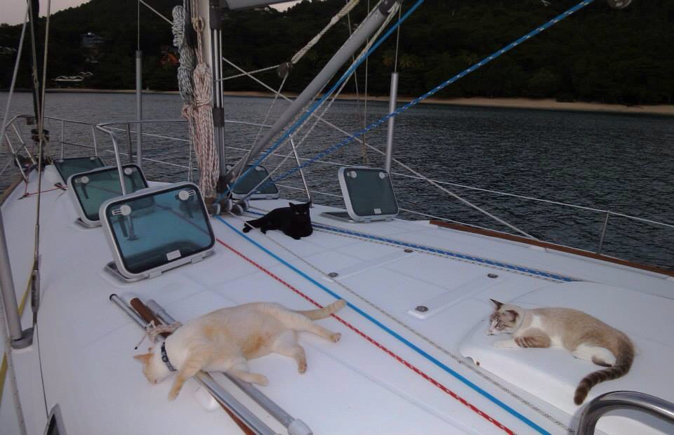 Click image for larger version  Name:ImageUploadedByCruisers Sailing Forum1400136973.291178.jpg Views:91 Size:353.5 KB ID:81315