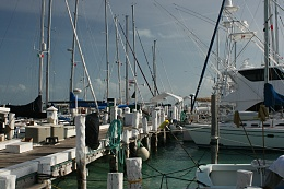 Click image for larger version  Name:Isla marina.jpg Views:181 Size:241.4 KB ID:8174