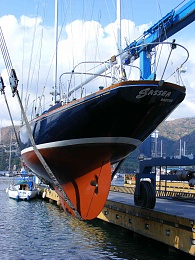 Click image for larger version  Name:Sassea being lifted.jpg Views:243 Size:500.6 KB ID:8190