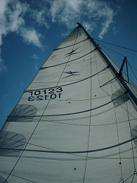 Click image for larger version  Name:Sailing 5 - 2006.jpg Views:90 Size:411.0 KB ID:82757