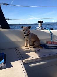 Click image for larger version  Name:ImageUploadedByCruisers Sailing Forum1411542793.259869.jpg Views:171 Size:191.9 KB ID:88708