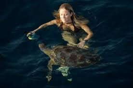 Click image for larger version  Name:How to catch a Turtle.jpg Views:285 Size:5.1 KB ID:88804