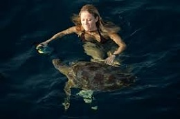 Click image for larger version  Name:How to catch a Turtle.jpg Views:309 Size:5.1 KB ID:88804