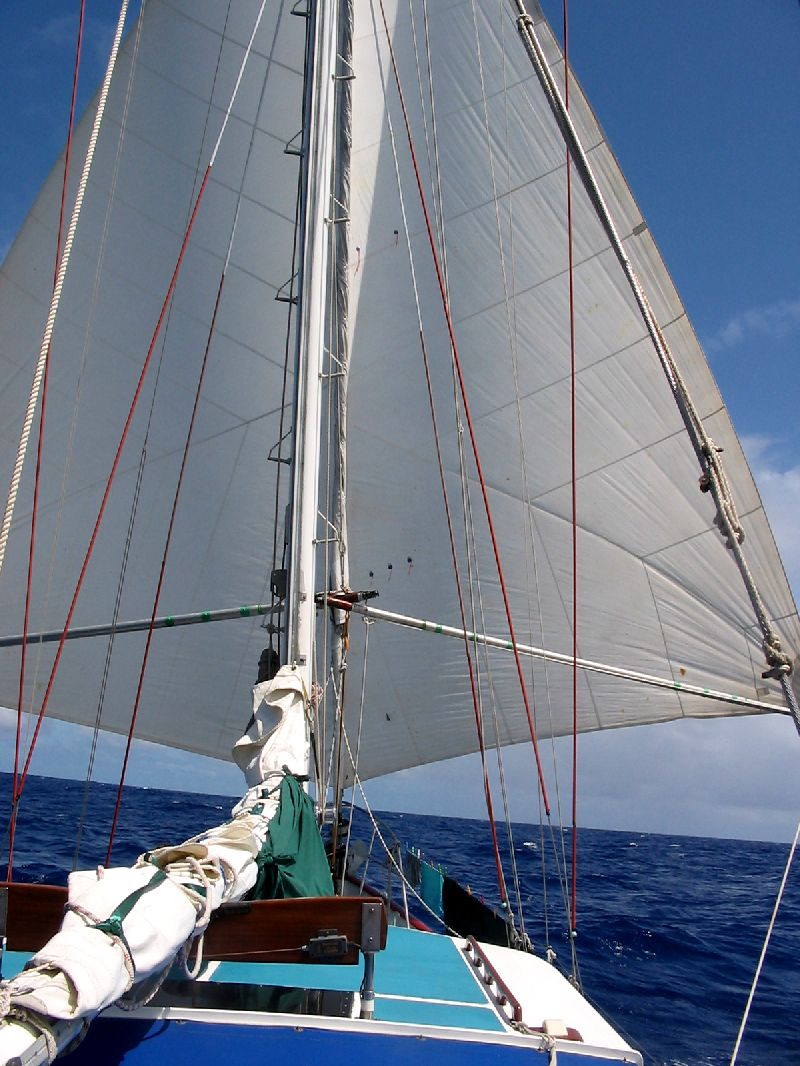 Click image for larger version  Name:sail1.jpg Views:311 Size:143.6 KB ID:92359