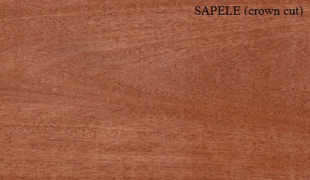 Click image for larger version  Name:SAPELE_crown_cut.jpg Views:61 Size:44.0 KB ID:92831