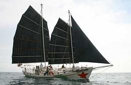 Click image for larger version  Name:Colvin Gazelle 42 2004 Sailing.jpg Views:208 Size:13.5 KB ID:93638