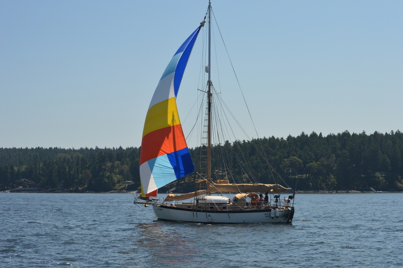 Click image for larger version  Name:AVALON SPINNAKER 005.JPG Views:99 Size:186.6 KB ID:94242