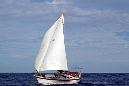 Click image for larger version  Name:Hanna-headsails.jpg Views:140 Size:75.1 KB ID:97500