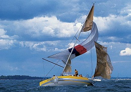 Click image for larger version  Name:Spinnaker wreck 1.jpg Views:240 Size:92.0 KB ID:97529