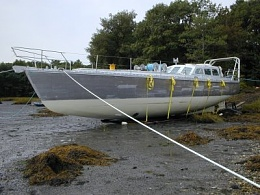 Click image for larger version  Name:ALUM Seal 56 Custom Beached.jpg Views:159 Size:32.0 KB ID:97713