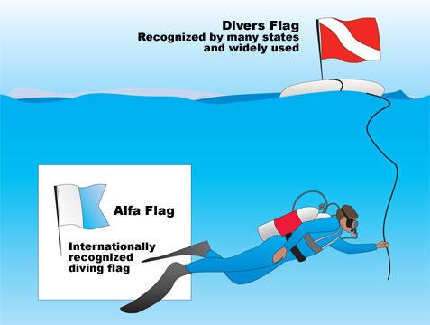 Click image for larger version  Name:DiverDown - Alpha.jpg Views:680 Size:29.0 KB ID:9784