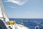 C354 Winds 10-15 0915 130613