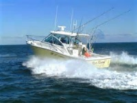 A group for boaters of all kinds that like to meet up at different marinas from Ft. Meyers to Crystal River.