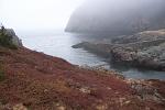 The Quidi Vidi entrance in Newfoundland gut