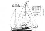 CR Tiburon36 new c2