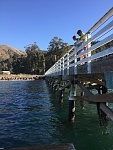 Pier at Prisoner's. For some reason leopard sharks love to congregate around the pier and they are easily spotted here.