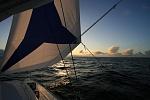 CatNirvana at sea