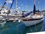 Gryphon Port Bow